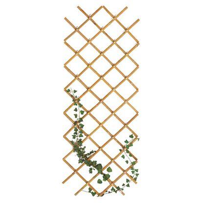 Immagine di Traliccio in bamboo, estensibile, colore naturale, canna Ø 20/22 mm, 90x240 cm