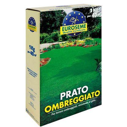 Immagine di Semi per prato, Euroseme ombreggiato, miscuglio adatto per la copertura di zone ombreggiate da alberi o arbusti, 1 kg