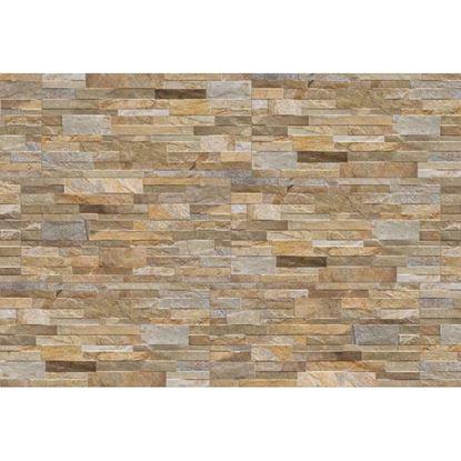 Immagine di Placchetta Granito 31x62 cm, gres porcellanato, confezione da 1,35 m², colore beige