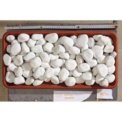 Immagine di Ciottolo, bianco carrara, 25/40 mm 20 kg