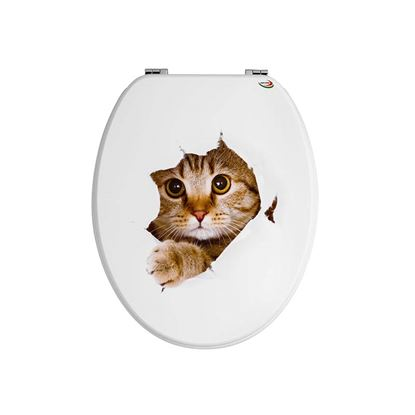Immagine di Sedile universale, gatto
